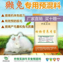 獭兔预混料獭兔饲料提高毛的品质兔饲料