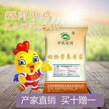 肉鸡预混料5%肉鸡中期饲料土鸡鸵鸟孔雀火鸡饲料