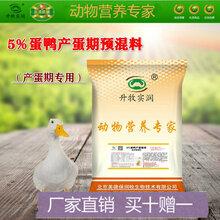 提高产蛋率产蛋期蛋鸭预混料蛋鸭饲料