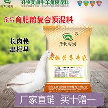 育肥鹅预混料北京包邮鹅饲料厂家鹅预混料