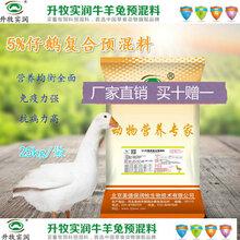 仔鹅饲料5%仔鹅预混料提高免疫力厂家直销