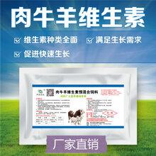 肉牛羊复合维生素牛羊专用多种维生素