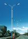 保定路灯专业灯杆生产厂家