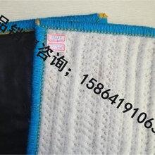 防水毯价格钠基膨润土防水毯厂家图片