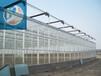 中翔溫室PC連棟智能溫室pc陽光板溫室溫室大棚骨架材料