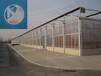 中翔公司PC連棟智能溫室pc陽光板溫室設計溫室大棚骨架材料