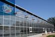 中翔制造文洛式玻璃温室玻璃温室制造玻璃温室大棚施工