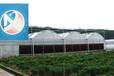 中翔厂家连栋薄膜温室拱形温室制造温室骨架材料