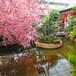 金昌生态餐厅温室质量优良餐厅温室