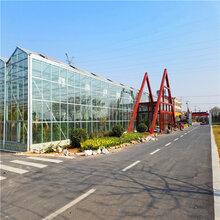 天津玻璃温室温室大棚厂家温室工程连栋温室