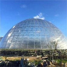 球形温室工程鸟巢温室大棚鸟巢温室造价