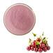 熱銷櫻桃提取物廠家凱源生物櫻桃粉水果粉櫻桃粉