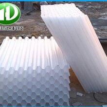 窩斜管填料聚丙烯環保材質六角蜂窩斜管填料沉淀池pp斜管
