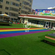 江苏幼儿园草坪生产