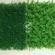 塑料仿真草坪批发价格