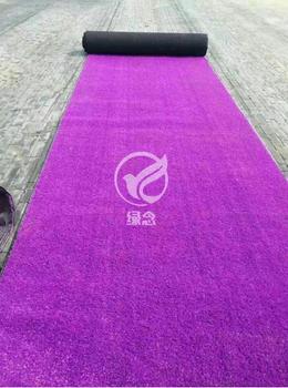 山东地毯草坪生产制造