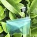 耐高温防紫外线阻燃聚碳酸酯板PC板