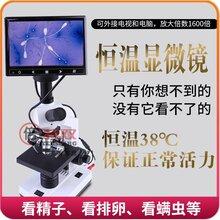 恒温电子显微镜