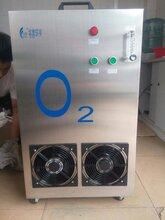 专业厂家直销制氧机纯氧机工业水产养殖汗蒸增氧助燃