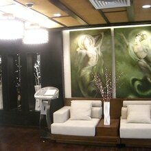 定制墙面壁纸-中式花鸟手绘壁纸定制图片