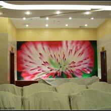 北京悦嘉睿智手绘壁纸优游作室定制手绘花鸟壁纸图片