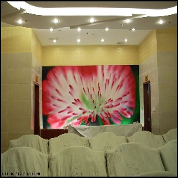北京悦嘉睿智手绘壁纸工作室定制手绘花鸟壁纸图片1