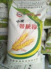 83蛋白含量25公斤编织袋装山东瑞冠活性谷朊粉图片