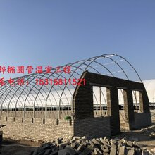 專業溫室大棚建造安裝優質溫室大棚全國供應橢圓管方管包塑鍍鋅畜牧大棚