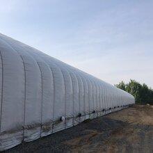 全封閉式畜牧溫室大棚畜牧溫室大棚橢圓管方管包塑鍍鋅畜牧溫室大棚