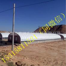 橢圓管定制棚優質養殖大棚全國供應拱形溫室大棚智能溫室大棚養鴨大棚