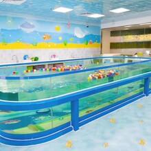 上海婴儿游泳馆搭建流程图片