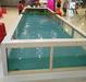 梅州喂奶鱼池厂家、吃奶鱼池报价、溜溜鱼池销售