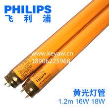 飞利浦T8LED黄光灯管14W/20W黄管半导体工厂专用