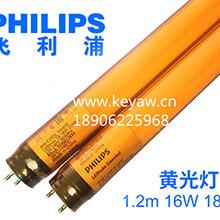 飞利浦led黄金灯管1.2m8W16W18W20WLED黄光灯管