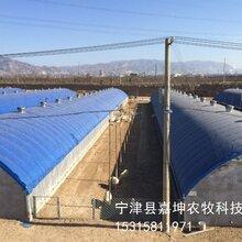 嘉坤畜牧温室养殖大棚自动化温室养殖大棚
