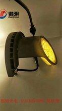 瓦楞灯LED瓦片灯效果金碧辉煌倡明光电