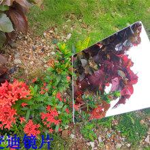 真空电镀塑料镜片亚克力镜片pc软镜片图片