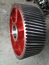 塑料制品用ZS65-90-III齿轮减速机及一轴二轴配件图片