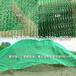 綠色塑料蓋土網博野太行防塵網制作廠家蓋土專用4針防塵網