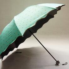 双层黑胶折叠伞