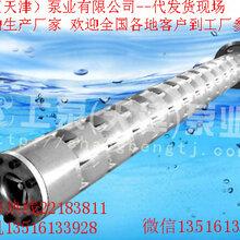 天津高效節能不銹鋼深井泵食品級不銹鋼深井泵250QH型圖片