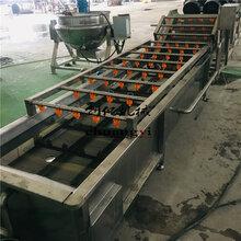 CY5000型水果鼓泡气泡清洗机两年质保水果清洗风干机厂家图片