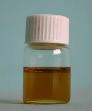 供应上海矩源JYT-100L藿香精油提取设备图片