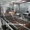 供應上海矩源涼茶/茶飲料罐裝生產線