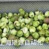 上海矩源獼猴桃果汁果醬果脯罐頭食品生產線