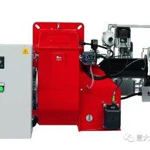 安徽芜湖燃气锅炉低氮改造公司