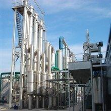 常年處理二手蒸發器飽和蒸汽冷凝器列管冷凝器濃縮蒸發器