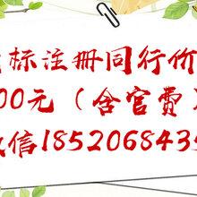 广州免费咨询工商注册白云区公司解除企业黑名挂靠地址记账报税