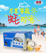广西海淳蚝姿生蚝在线商城在线寻找合伙人图片
