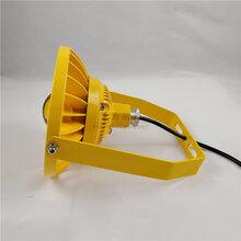 防水防尘厂用30w免维护led防爆灯